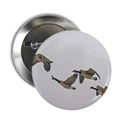 "Canadian Geese In Flight 2.25"" Button (100 pack)"