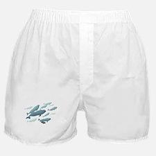 Beluga Whales Boxer Shorts Whale Art Underwear