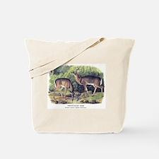 Audubon White-Tailed Deer Tote Bag