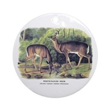 Audubon White-Tailed Deer Ornament (Round)
