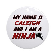 my name is caleigh and i am a ninja Ornament (Roun