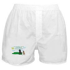 labradoodle Boxer Shorts