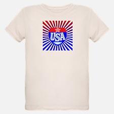 Bold USA T-Shirt