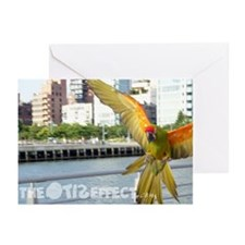 Theotiseffect.com Greeting Cards (Pk of 10)