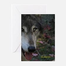 Grey Wolf: Ingo Greeting Cards (Pk of 10)