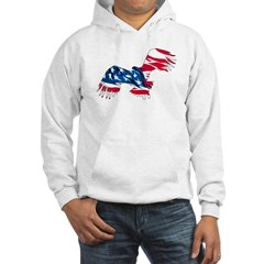 Red White Blue Eagle Hoodie