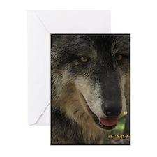 Grey Wolf: Nira Greeting Cards (Pk of 10)