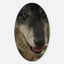Grey Wolf: Nira Oval Decal