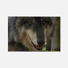 Grey Wolf: Nira Rectangle Magnet