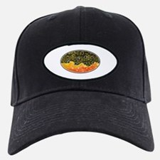 Brook Trout Fly Fishing Baseball Hat
