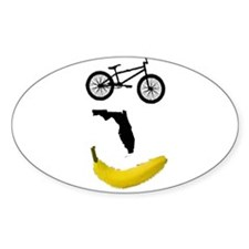 Fury BMX Oval Decal