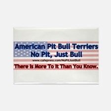 APBT More To It (flag) Rectangle Magnet
