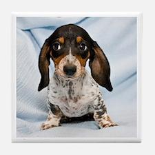 Speckled Puppy Tile Coaster