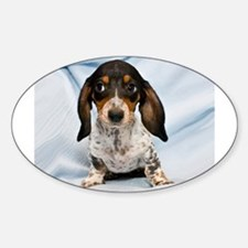 Speckled Puppy Oval Decal