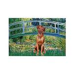 Garden / R Ridgeback Rectangle Magnet (10 pack)