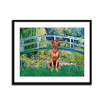 Garden / R Ridgeback Framed Panel Print