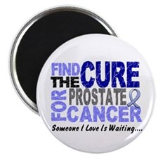"Find The Cure Prostate Cancer 2.25"" Magnet (10 pac"