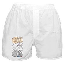 3 ASL Kitties Boxer Shorts