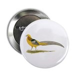 "Yellow Golden Pheasant 2.25"" Button (100 pack"