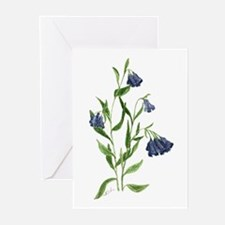 Mountain Bluebell Greeting Cards (Pk of 20)