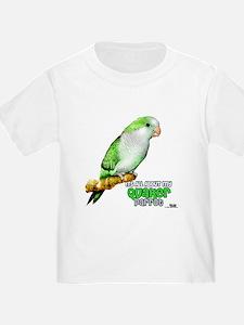 Quaker Parrot T