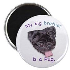 My brother is a black Pug Magnet