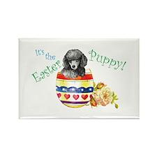 Easter Poodle Rectangle Magnet