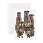 Meerkat Greeting Cards (Pk of 10)