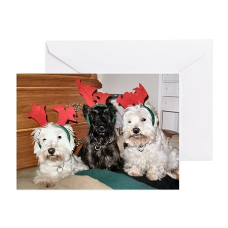 Credible Critter-Westie & Scottie Greet Cards Pk6