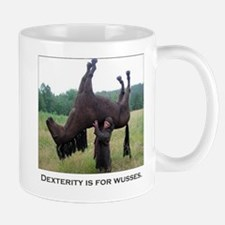 Dex is for Wusses Mug