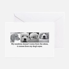 My Dog's Eyes Greeting Cards (Pk of 10)