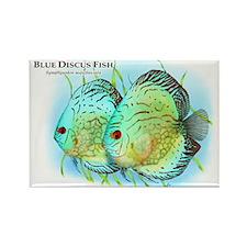 Blue Discus Fish Rectangle Magnet