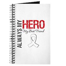 LungCancerHeroBestFriend Journal