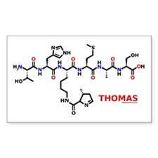 Thomas name molecule Rectangle Decal
