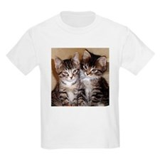 Tabby kittens Kids T-Shirt