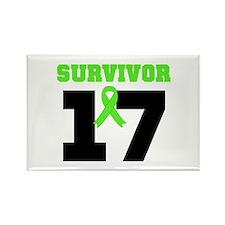 Lymphoma Survivor 17Year Rectangle Magnet