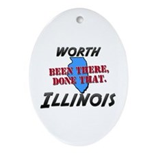 worth illinois - been there, done that Ornament (O