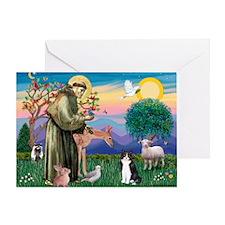 St Francis / (B&W) Cat Greeting Card