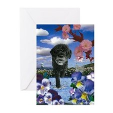 Portie Collage Greeting Cards (Pk of 10)