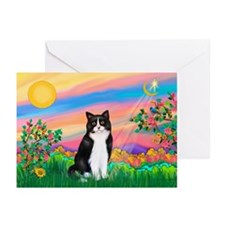 Day Star / (B&W) Cat Greeting Cards (Pk of 10)