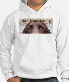 Boykin Spaniel Eyes are Watching Jumper Hoody