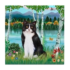 Birches / (B&W) Cat Tile Coaster