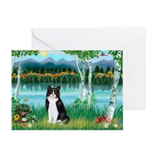 Birches / (B&W) Cat Greeting Card