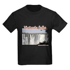 Victoria falls T
