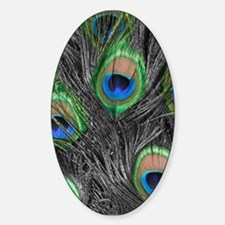 Black and White Peacock Feathers Oval Decal