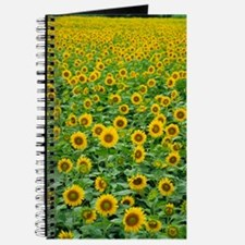 Sunflowers X Journal
