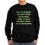 Due In September Not Twins Sweatshirt (dark)