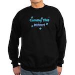 Coming This Winter! Sweatshirt (dark)