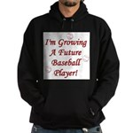 Growing A Future Baseball Pla Hoodie (dark)