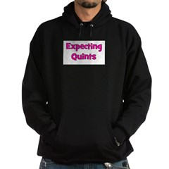 Expecting Quints! Hoodie